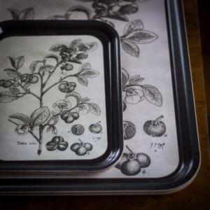 Bricka med illustration av teplanta