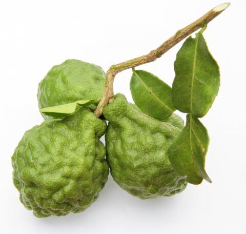 Bergamott-frukt