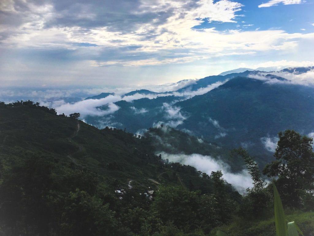 Darjeeling Utsikt över Makaibari. Foto Anna Daneberga.