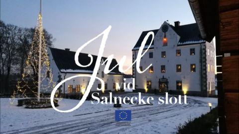 Fjärdhundraland Julmarknad Salnecke
