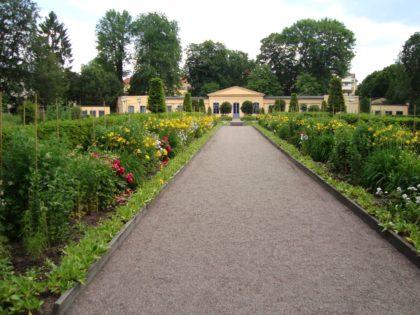På trädgårdsfest i Linnéträdgården