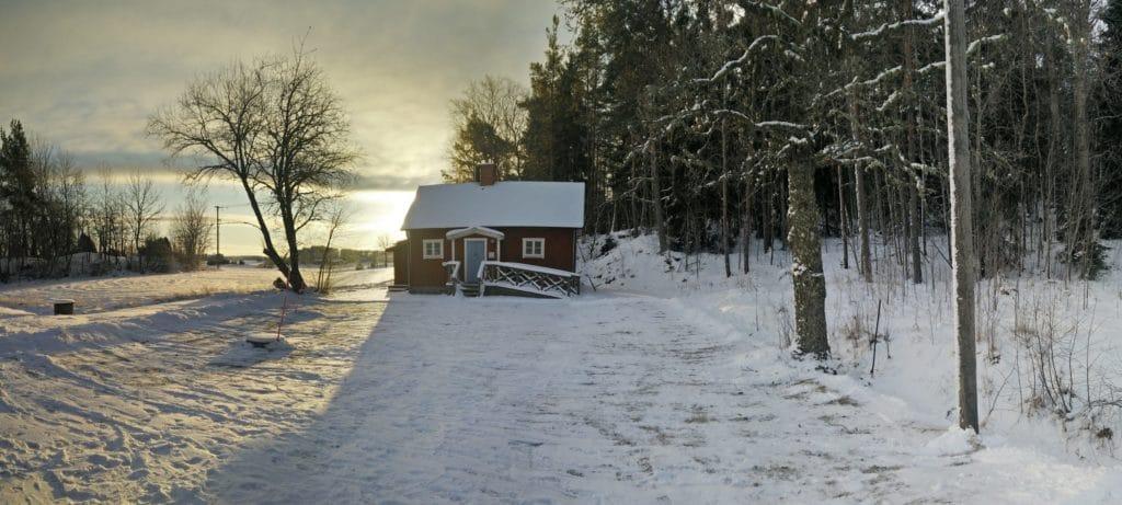 Vinterpanorama Bastun Pekoe ekologiskt te